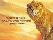 Have A Great Wildlife Experience With Nairobi Safari Club